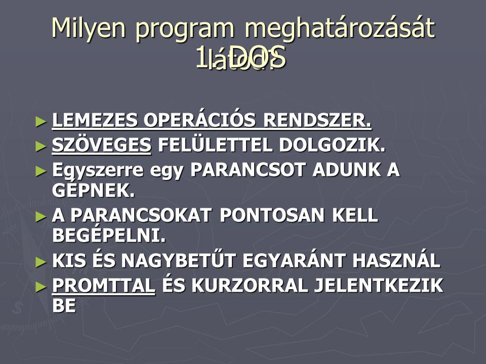 Milyen program meghatározását látod.► LEMEZES OPERÁCIÓS RENDSZER.