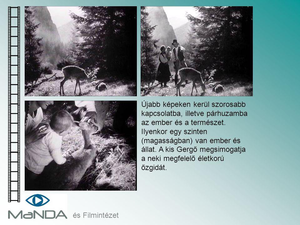 és Filmintézet Újabb képeken kerül szorosabb kapcsolatba, illetve párhuzamba az ember és a természet. Ilyenkor egy szinten (magasságban) van ember és