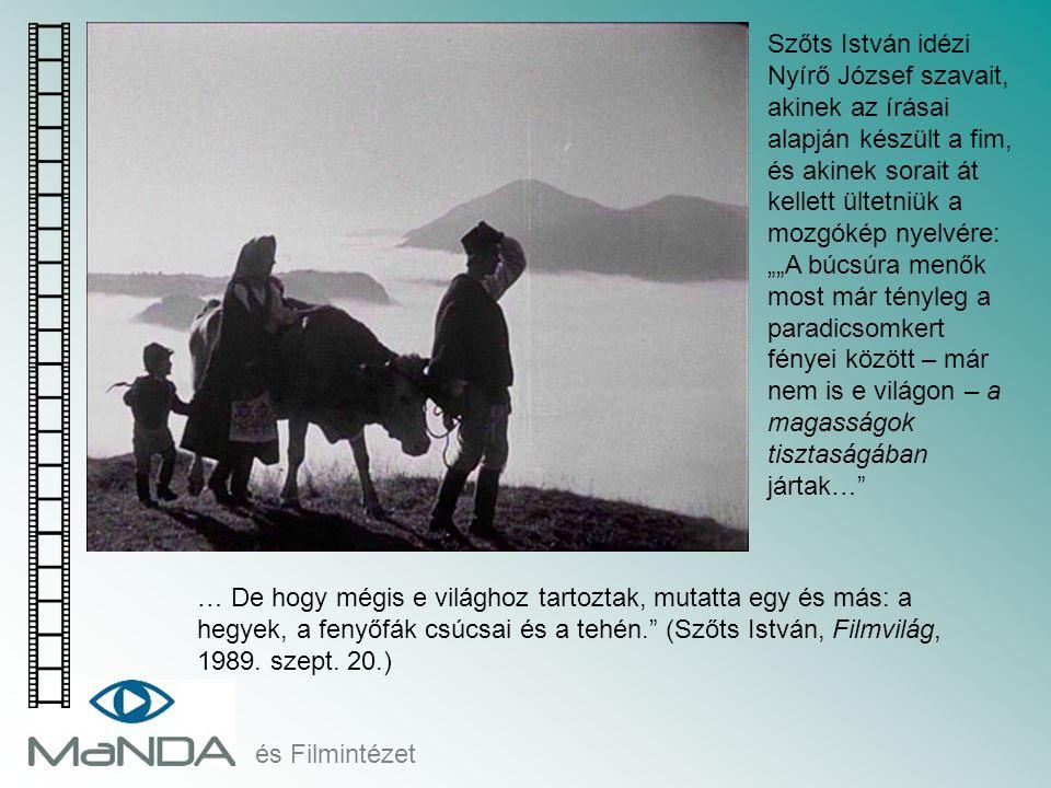 """és Filmintézet … De hogy mégis e világhoz tartoztak, mutatta egy és más: a hegyek, a fenyőfák csúcsai és a tehén."""" (Szőts István, Filmvilág, 1989. sze"""