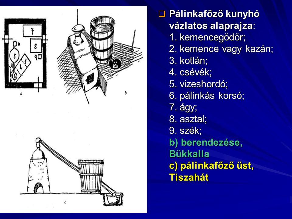  Pálinkafőző kunyhó vázlatos alaprajza: 1. kemencegödör; 2. kemence vagy kazán; 3. kotlán; 4. csévék; 5. vizeshordó; 6. pálinkás korsó; 7. ágy; 8. as