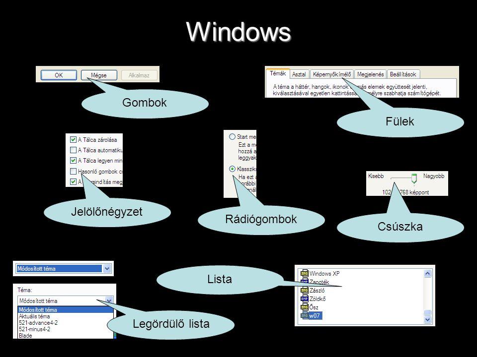 Windows Gombok Fülek Jelölőnégyzet Rádiógombok Csúszka Legördülő lista Lista