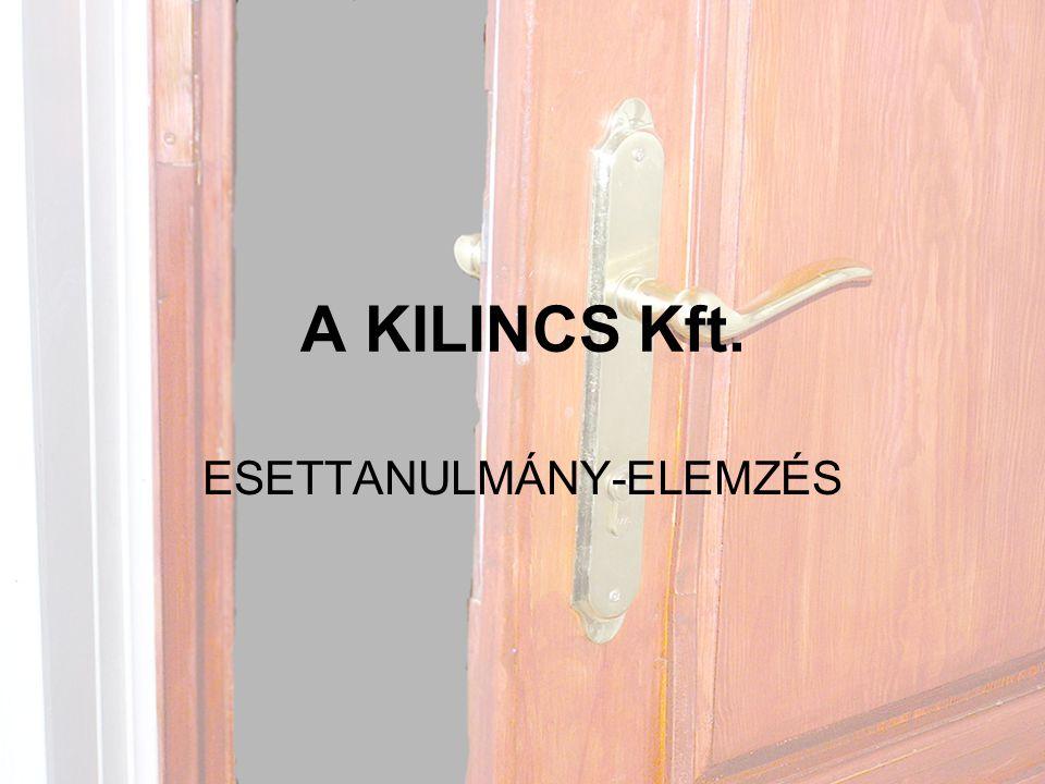 A KILINCS Kft. ESETTANULMÁNY-ELEMZÉS