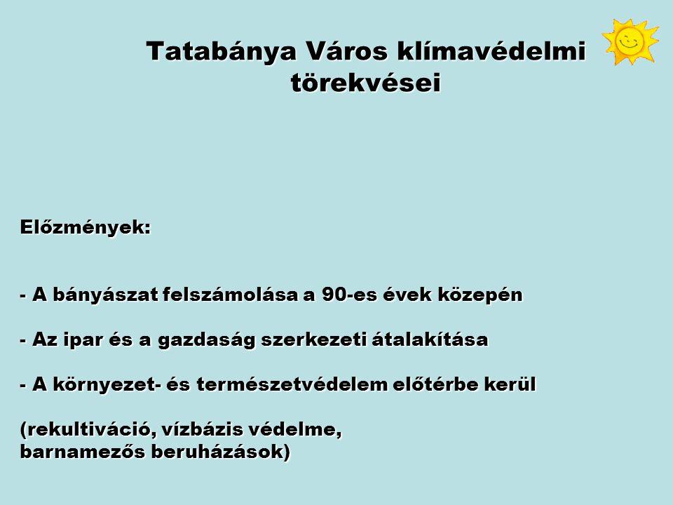 Tatabánya Város Klímavédelmi törekvései kormányzási eszközök: Az Önkormányzat alapvetően négyféle kormányzási eszköz segítségével ösztönözheti a klímaprogram megvalósulását: 1.