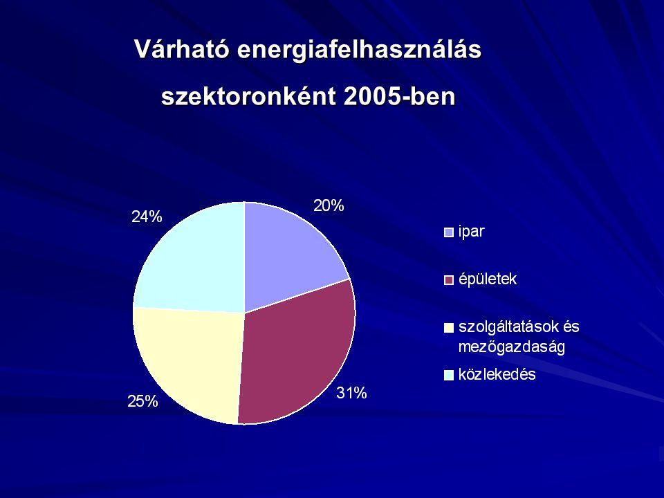 Várható energiafelhasználás szektoronként 2005-ben