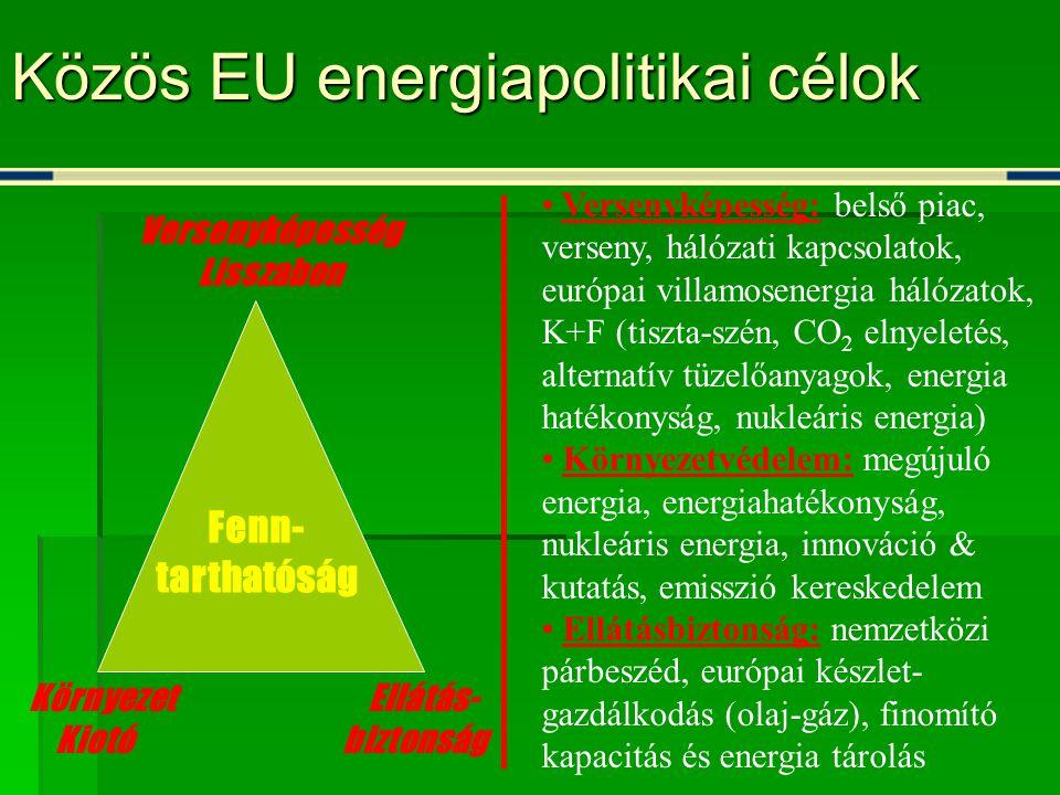 Közös EU energiapolitikai célok Versenyképesség Lisszabon Környezet Ellátás- Kiotó biztonság • Versenyképesség: belső piac, verseny, hálózati kapcsolatok, európai villamosenergia hálózatok, K+F (tiszta-szén, CO 2 elnyeletés, alternatív tüzelőanyagok, energia hatékonyság, nukleáris energia) • Környezetvédelem: megújuló energia, energiahatékonyság, nukleáris energia, innováció & kutatás, emisszió kereskedelem • Ellátásbiztonság: nemzetközi párbeszéd, európai készlet- gazdálkodás (olaj-gáz), finomító kapacitás és energia tárolás Fenn- tarthatóság