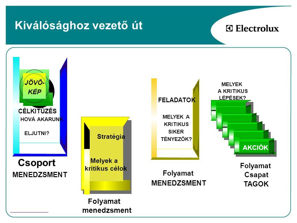 Controlling szervezet Tevékenységek szétválása 1.Működésbeli ( Satellite Gyár ) Költséggazdálkodás Beruházások nyomonkövetése DM hatékonyság kontrolling DL hatékonyság kontrolling