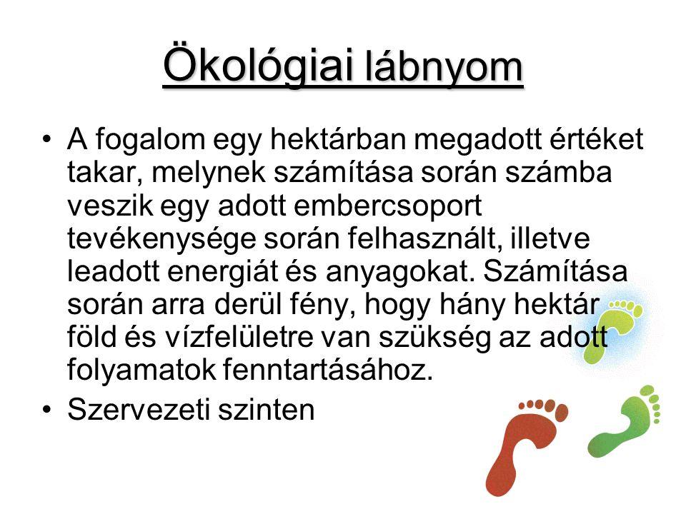 Ökológiai lábnyom •A fogalom egy hektárban megadott értéket takar, melynek számítása során számba veszik egy adott embercsoport tevékenysége során felhasznált, illetve leadott energiát és anyagokat.