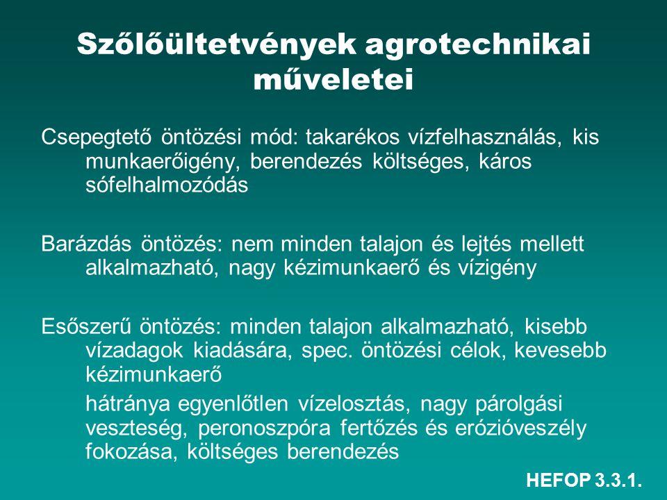 HEFOP 3.3.1. Szőlőültetvények agrotechnikai műveletei Csepegtető öntözési mód: takarékos vízfelhasználás, kis munkaerőigény, berendezés költséges, kár