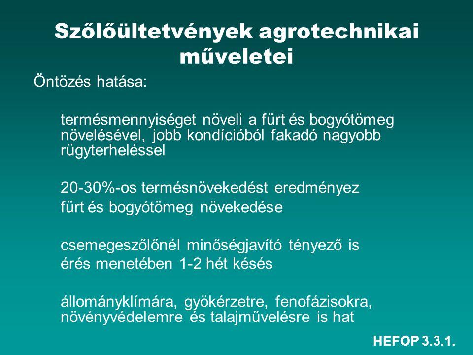 HEFOP 3.3.1. Szőlőültetvények agrotechnikai műveletei Öntözés hatása: termésmennyiséget növeli a fürt és bogyótömeg növelésével, jobb kondícióból faka