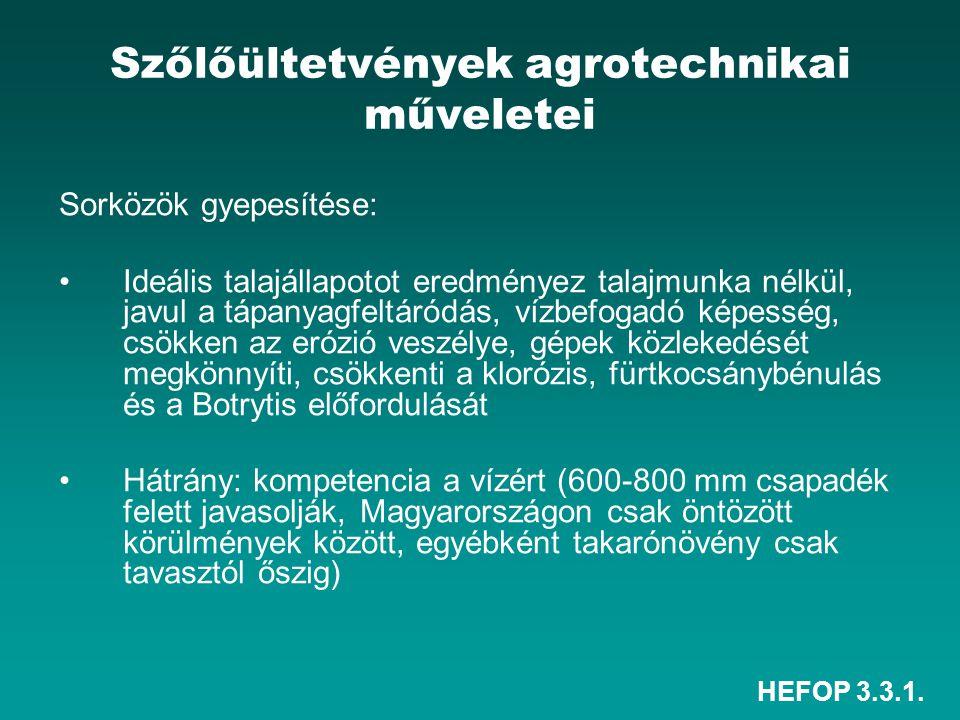 HEFOP 3.3.1. Szőlőültetvények agrotechnikai műveletei Sorközök gyepesítése: •Ideális talajállapotot eredményez talajmunka nélkül, javul a tápanyagfelt