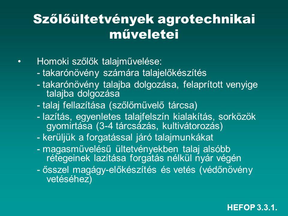 HEFOP 3.3.1. Szőlőültetvények agrotechnikai műveletei •Homoki szőlők talajművelése: - takarónövény számára talajelőkészítés - takarónövény talajba dol