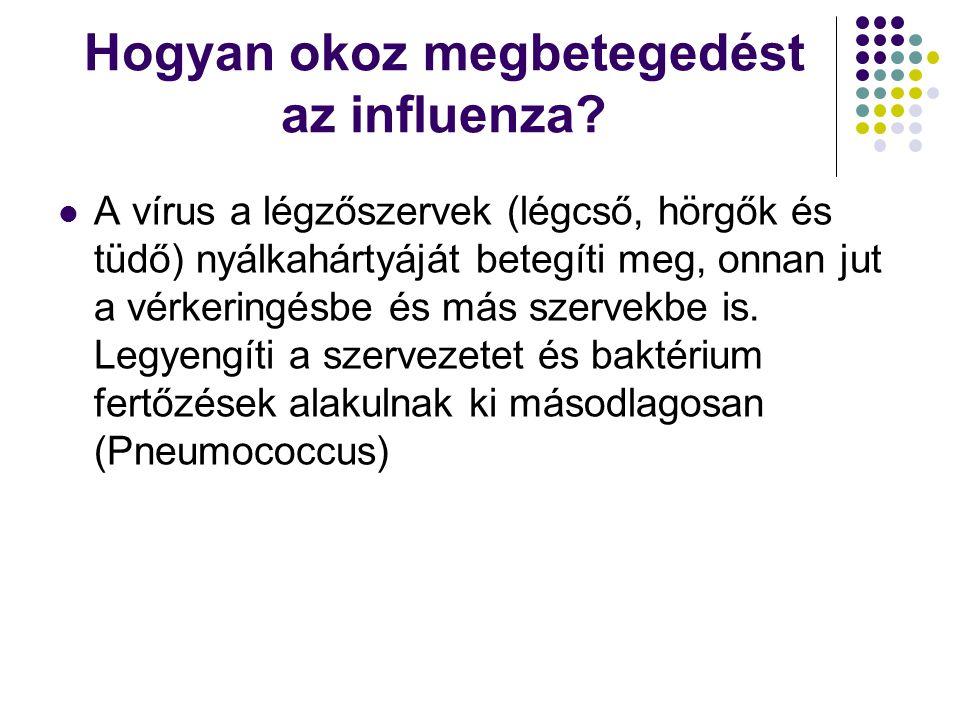 Hogyan okoz megbetegedést az influenza?  A vírus a légzőszervek (légcső, hörgők és tüdő) nyálkahártyáját betegíti meg, onnan jut a vérkeringésbe és m