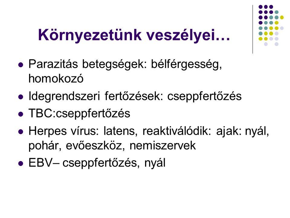 Környezetünk veszélyei…  Parazitás betegségek: bélférgesség, homokozó  Idegrendszeri fertőzések: cseppfertőzés  TBC:cseppfertőzés  Herpes vírus: latens, reaktiválódik: ajak: nyál, pohár, evőeszköz, nemiszervek  EBV– cseppfertőzés, nyál