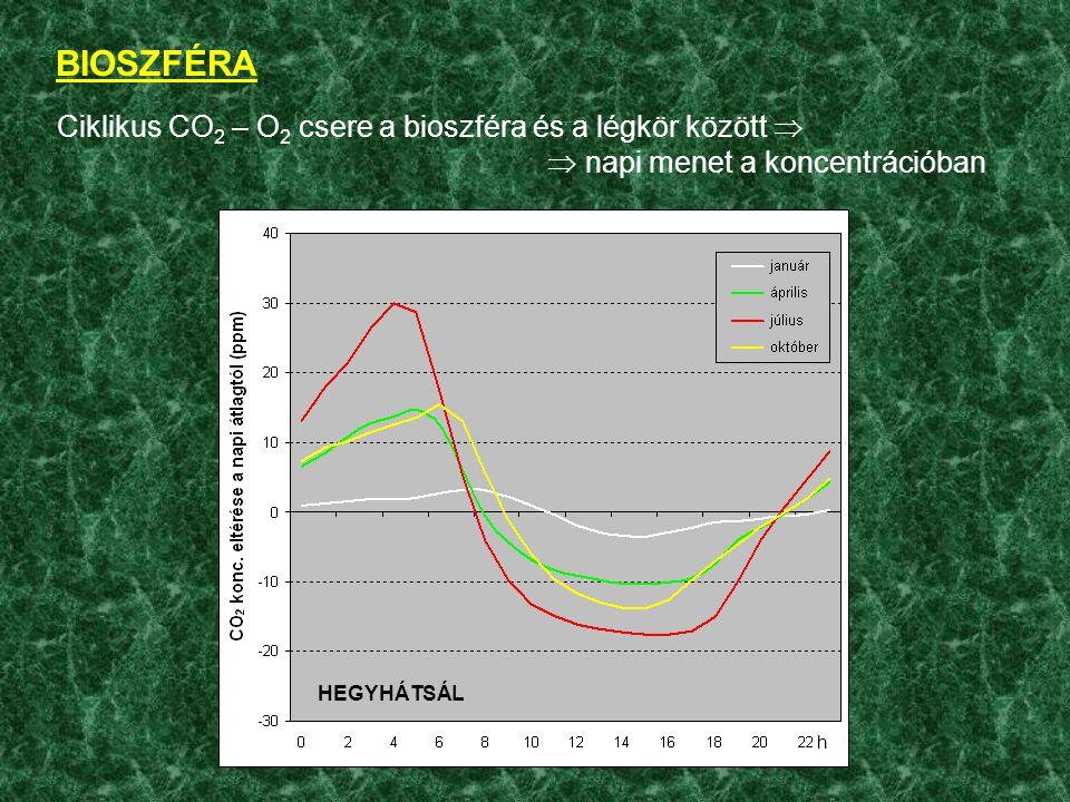 BIOSZFÉRA Növények: nem csak CO 2 /O 2 .