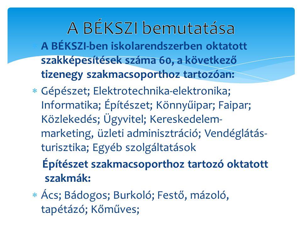  A BÉKSZI-ben iskolarendszerben oktatott szakképesítések száma 60, a következő tizenegy szakmacsoporthoz tartozóan:  Gépészet; Elektrotechnika-elekt