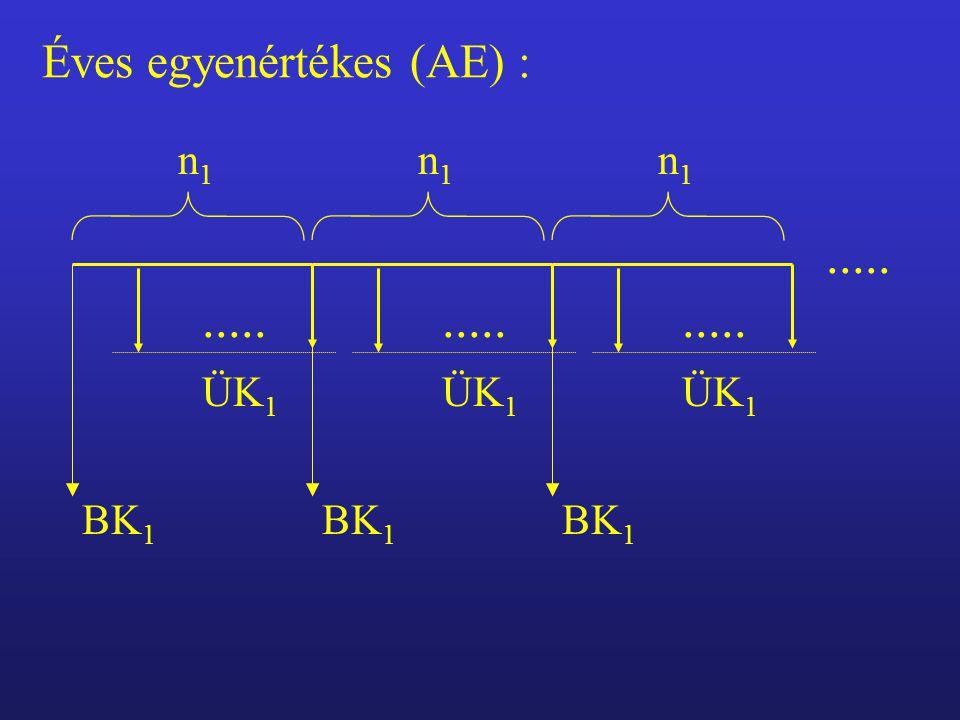 Éves egyenértékes (AE) :..... BK 1 ÜK 1 n1n1..... BK 1 ÜK 1 n1n1..... BK 1 ÜK 1 n1n1.....