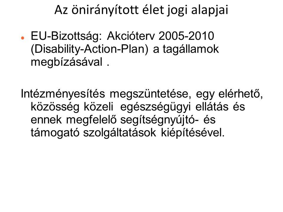  EU-Bizottság:Akcióterv 2005-2010 (Disability-Action-Plan) a tagállamok megbízásával.