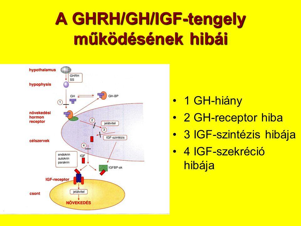 A GHRH/GH/IGF-tengely működésének hibái •1 GH-hiány •2 GH-receptor hiba •3 IGF-szintézis hibája •4 IGF-szekréció hibája
