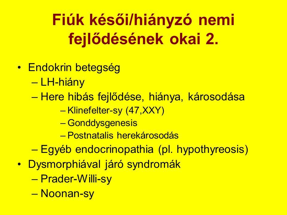 Fiúk késői/hiányzó nemi fejlődésének okai 2. •Endokrin betegség –LH-hiány –Here hibás fejlődése, hiánya, károsodása –Klinefelter-sy (47,XXY) –Gonddysg