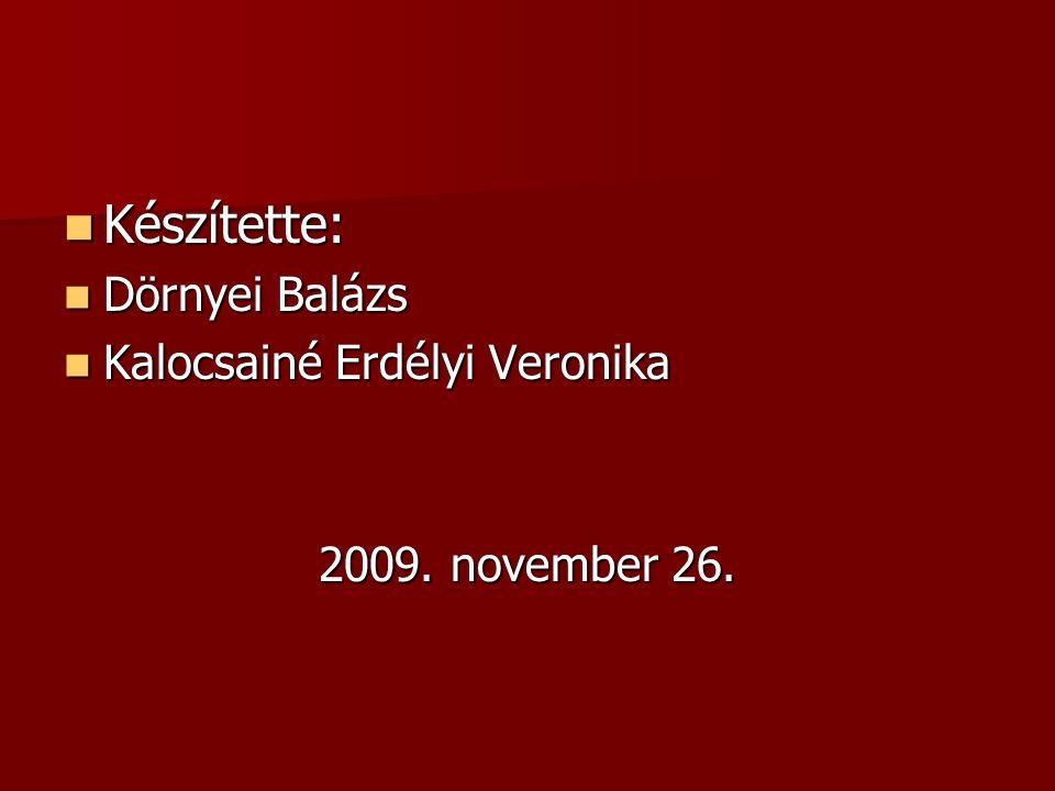  Készítette:  Dörnyei Balázs  Kalocsainé Erdélyi Veronika 2009. november 26.
