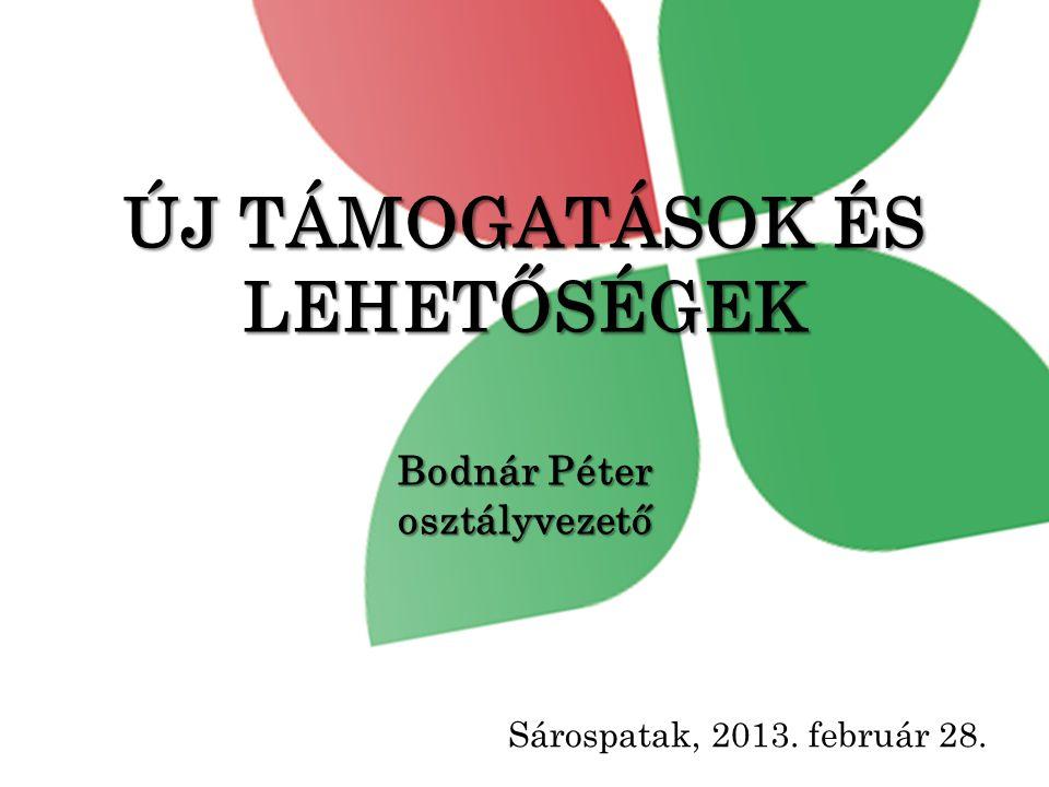 ÚJ TÁMOGATÁSOK ÉS LEHETŐSÉGEK Bodnár Péter osztályvezető Sárospatak, 2013. február 28.