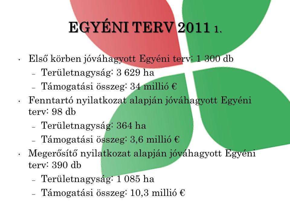 EGYÉNI TERV 2011 1.