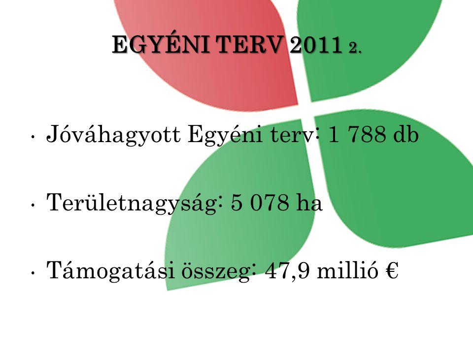 EGYÉNI TERV 2011 2.