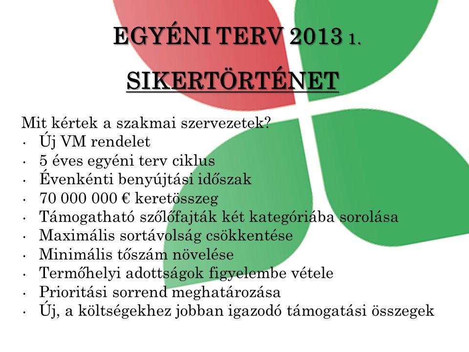 EGYÉNI TERV 2013 1.SIKERTÖRTÉNET Mit kértek a szakmai szervezetek.