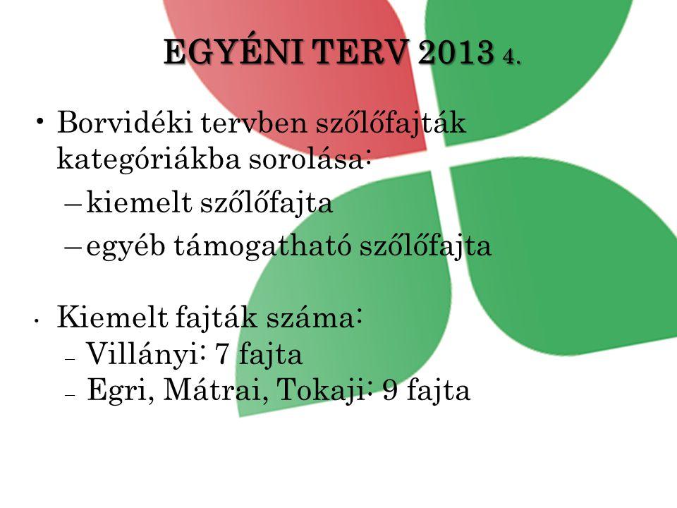 EGYÉNI TERV 2013 4.