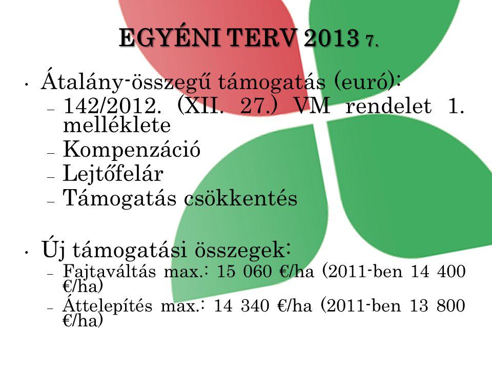 EGYÉNI TERV 2013 7.• Átalány-összegű támogatás (euró): – 142/2012.