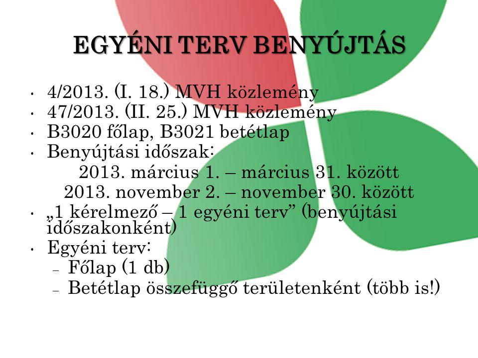 EGYÉNI TERV BENYÚJTÁS • 4/2013.(I. 18.) MVH közlemény • 47/2013.