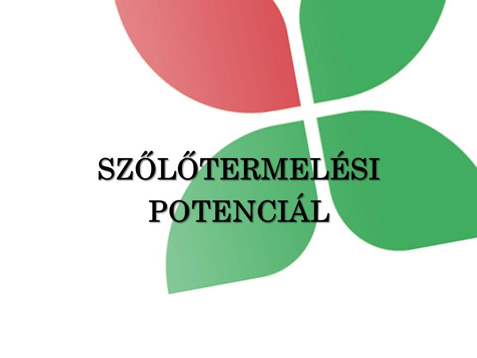SZŐLŐTERMELÉSIPOTENCIÁL