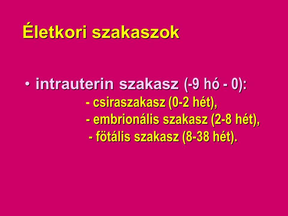Életkori szakaszok •intrauterin szakasz (-9 hó - 0): csiraszakasz (0-2 hét), - embrionális szakasz (2-8 hét), - fötális szakasz (8-38 hét). •intrauter