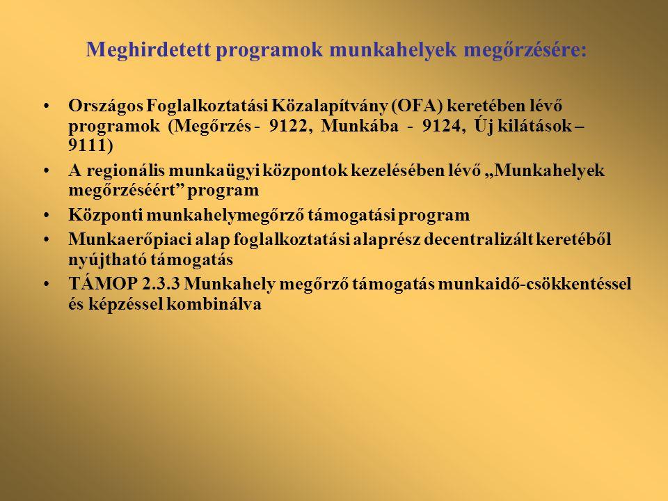 Meghirdetett programok munkahelyek megőrzésére: •Országos Foglalkoztatási Közalapítvány (OFA) keretében lévő programok (Megőrzés - 9122, Munkába - 912