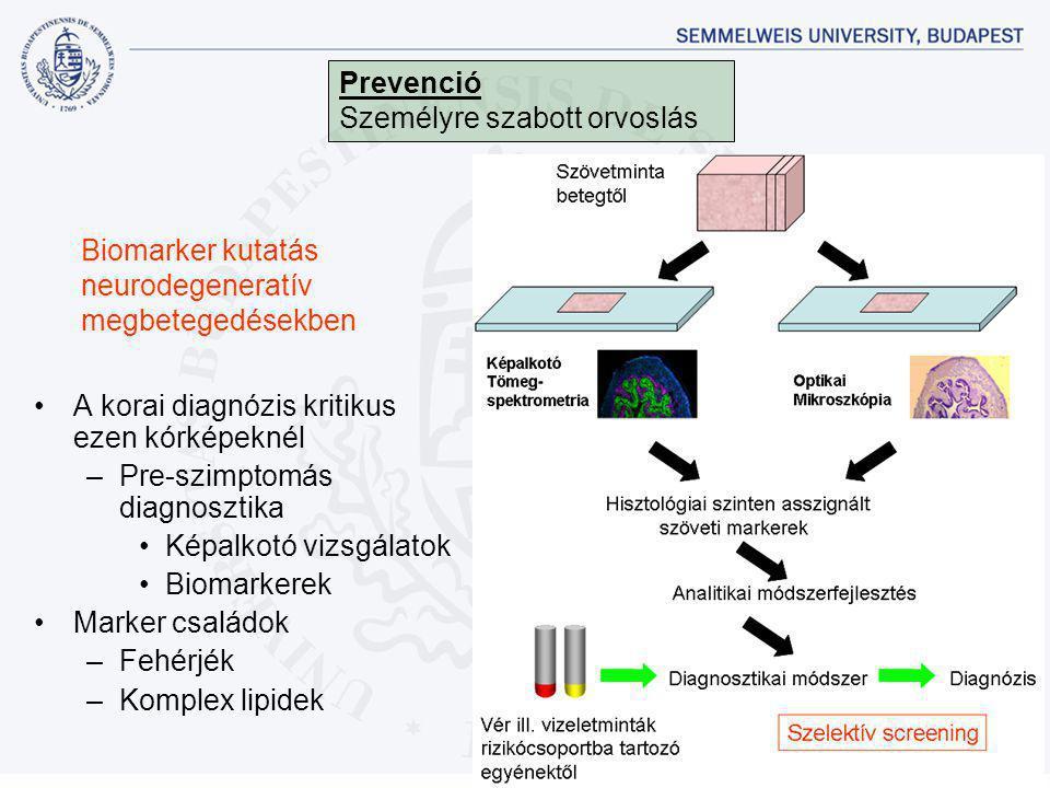 Biomarker kutatás neurodegeneratív megbetegedésekben •A korai diagnózis kritikus ezen kórképeknél –Pre-szimptomás diagnosztika •Képalkotó vizsgálatok