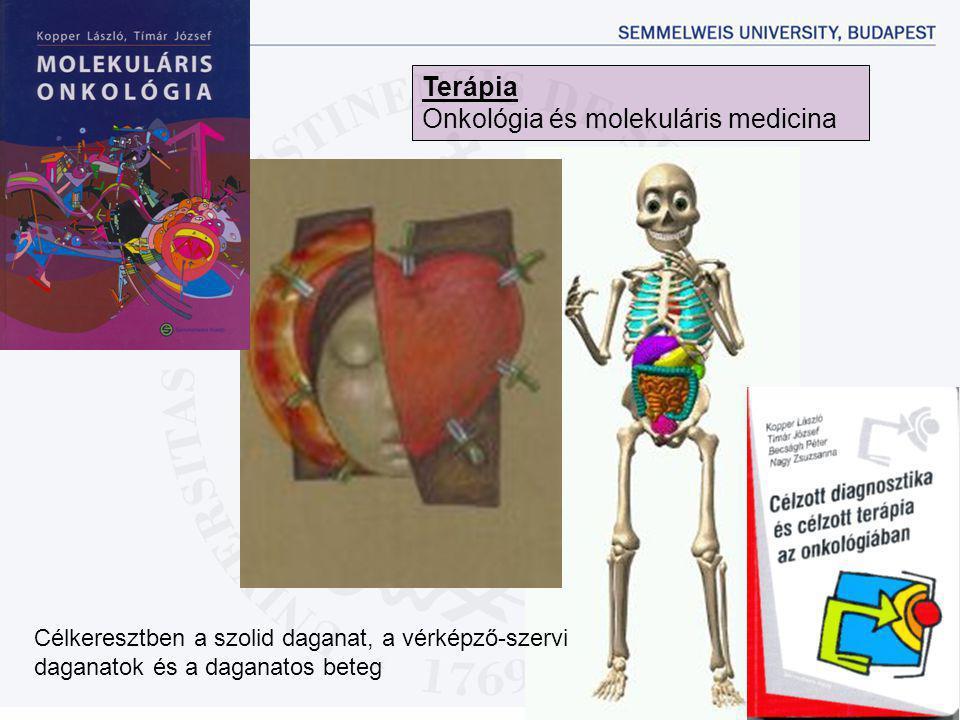 Célkeresztben a szolid daganat, a vérképző-szervi daganatok és a daganatos beteg Terápia Onkológia és molekuláris medicina