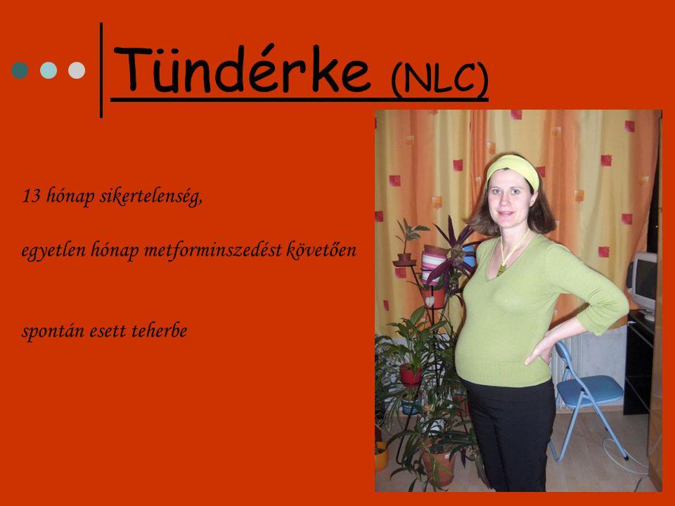 Tündérke (NLC) 13 hónap sikertelenség, egyetlen hónap metforminszedést követően spontán esett teherbe