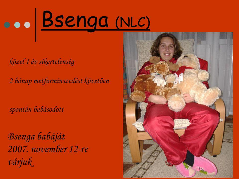 közel 1 év sikertelenség 2 hónap metforminszedést követően spontán babásodott Bsenga (NLC) Bsenga babáját 2007. november 12-re várjuk