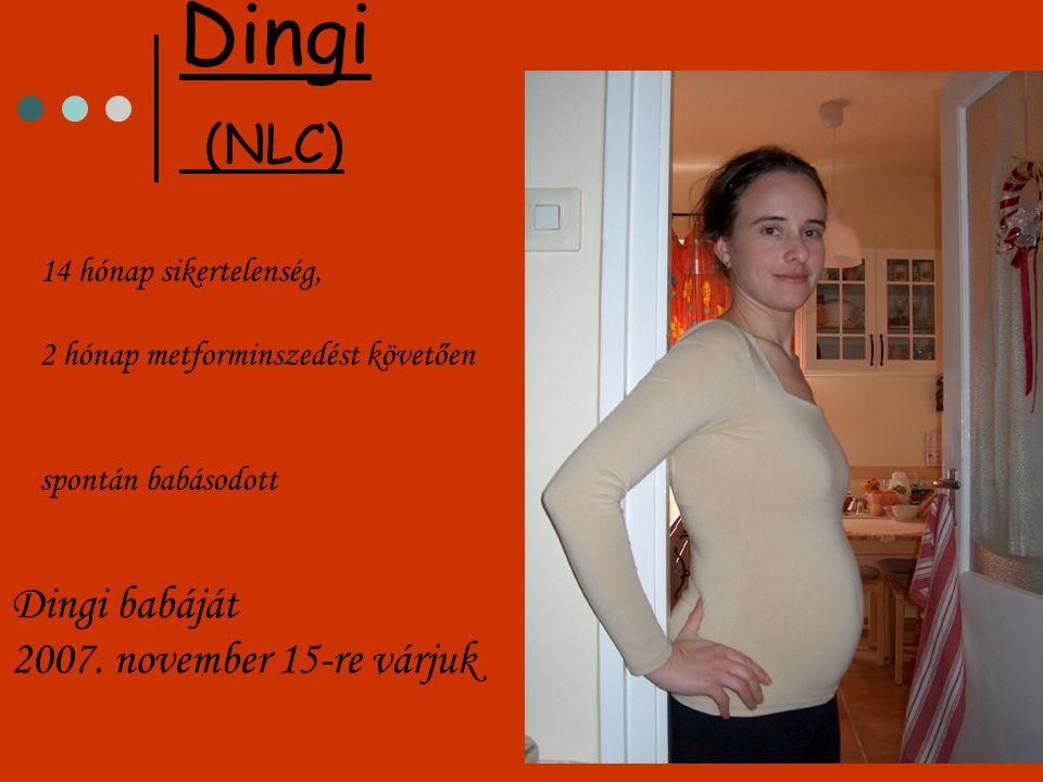 14 hónap sikertelenség, 2 hónap metforminszedést követően spontán babásodott Dingi (NLC) Dingi babáját 2007. november 15-re várjuk