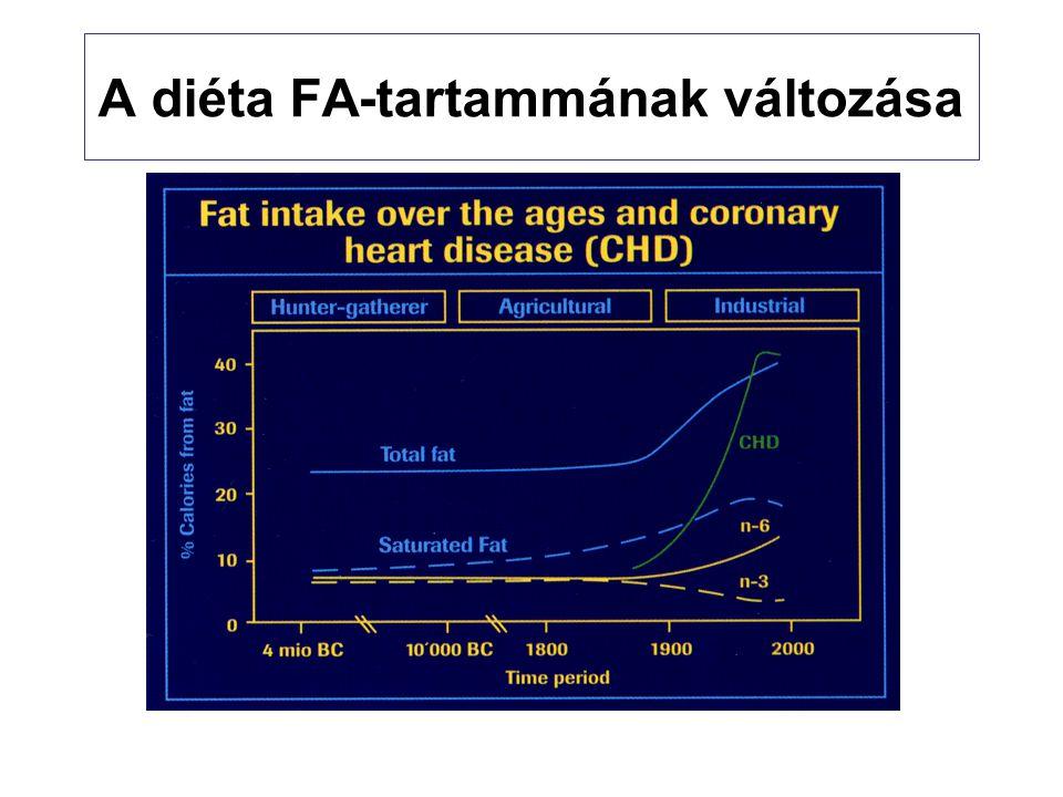 A diéta FA-tartammának változása