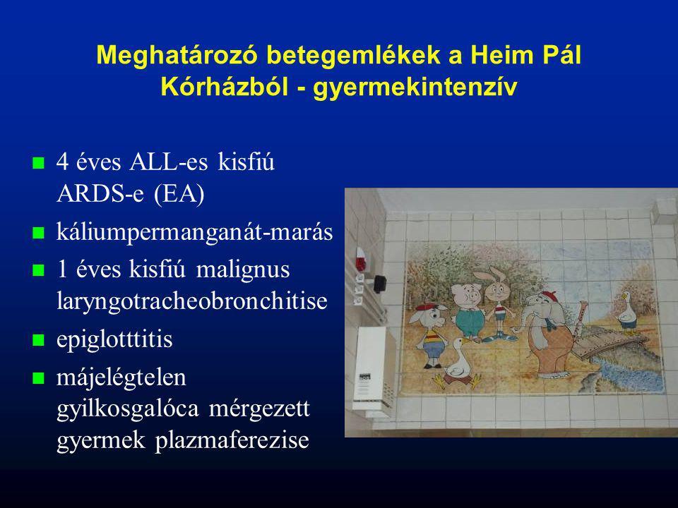 Meghatározó betegemlékek a Heim Pál Kórházból - gyermekintenzív n n 4 éves ALL-es kisfiú ARDS-e (EA) n n káliumpermanganát-marás n n 1 éves kisfiú mal