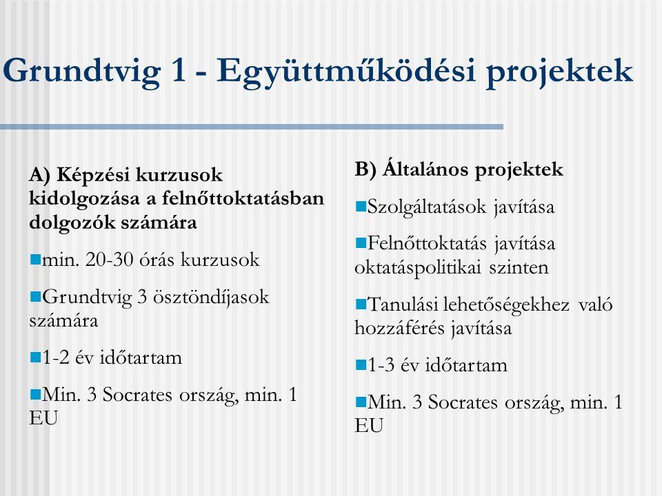 Grundtvig 2 - Tanulási kapcsolatok Pénzügyek  Átlag 8.000 euró/ partner/ év  Alaptámogatás/ mobilitási támogatás Előkészítő látogatások  Egyéni látogatás vagy tematikus partnerkereső szeminárium  1 személy/intézmény  Maximum 1000 euró támogatás