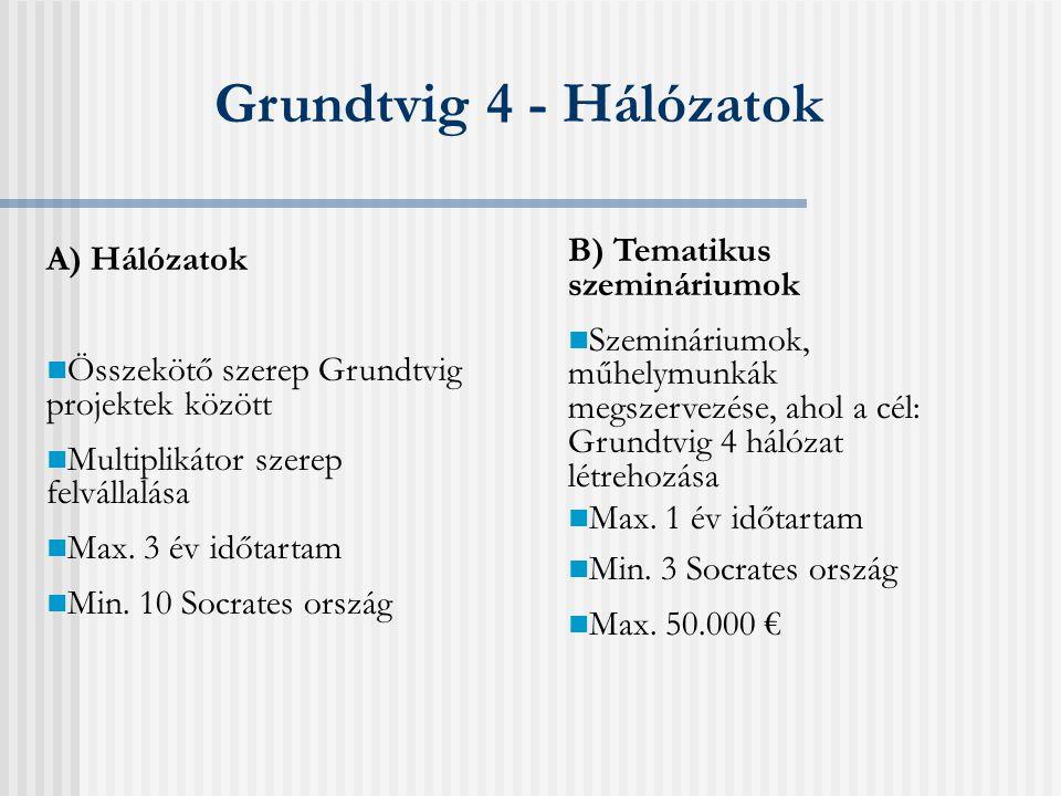 Grundtvig 1 - Együttműködési projektek A) Képzési kurzusok kidolgozása a felnőttoktatásban dolgozók számára  min.