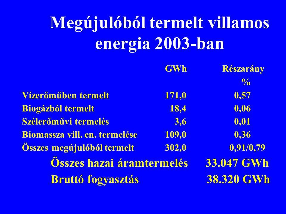 Megújulóból termelt villamos energia 2003-ban GWhRészarány % Vízerőműben termelt171,0 0,57 Biogázból termelt 18,4 0,06 Szélerőművi termelés 3,6 0,01 B