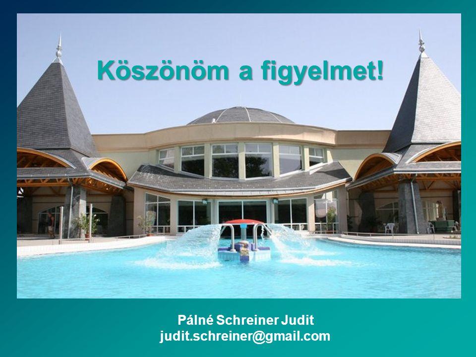 Köszönöm a figyelmet! Pálné Schreiner Judit judit.schreiner@gmail.com