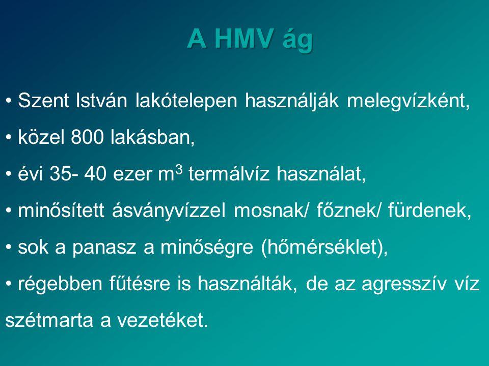 A HMV ág • Szent István lakótelepen használják melegvízként, • közel 800 lakásban, • évi 35- 40 ezer m 3 termálvíz használat, • minősített ásványvízze