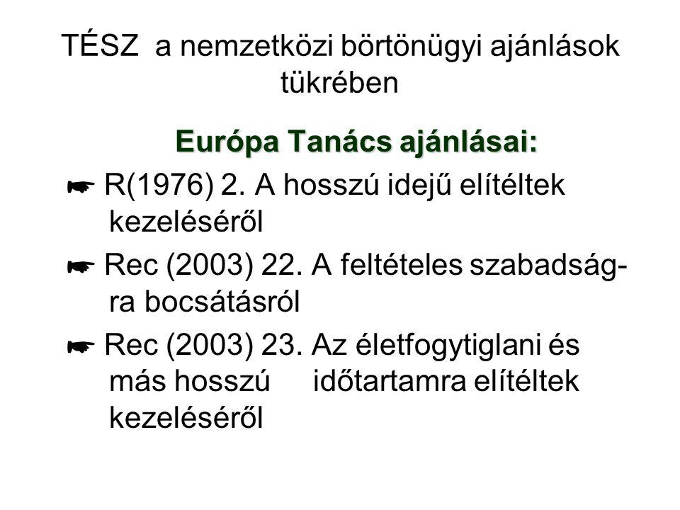 TÉSZ a nemzetközi börtönügyi ajánlások tükrében Európa Tanács ajánlásai: ☛ R(1976) 2. A hosszú idejű elítéltek kezeléséről ☛ Rec (2003) 22. A feltétel