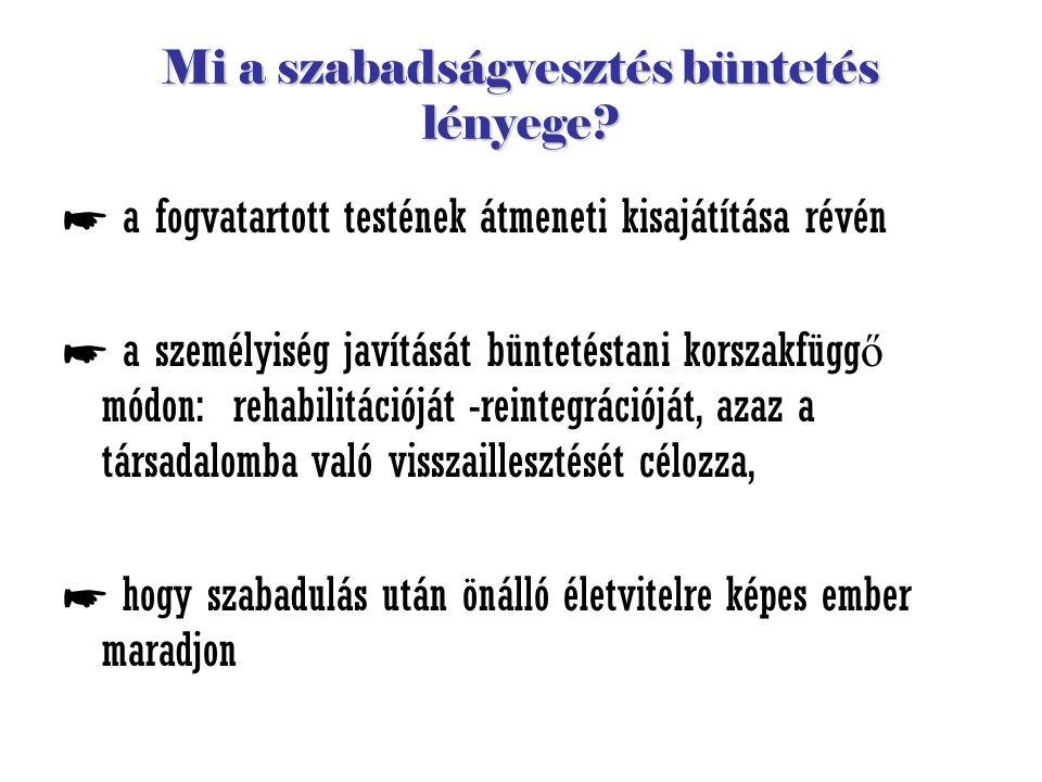 """Végrehajtási problémák ■ rezsim: - elkülönítés(börtönártalmak kiszűrése), - napirend - """"nevelés – pozitív ráhatás korlátai foglalkoztatás: ■ foglalkoztatás: - munkáltatás (gazdaságtalan) - oktatás – képzés (értelmetlen) ■ visszavezetés ■ visszavezetés a társadalomba."""