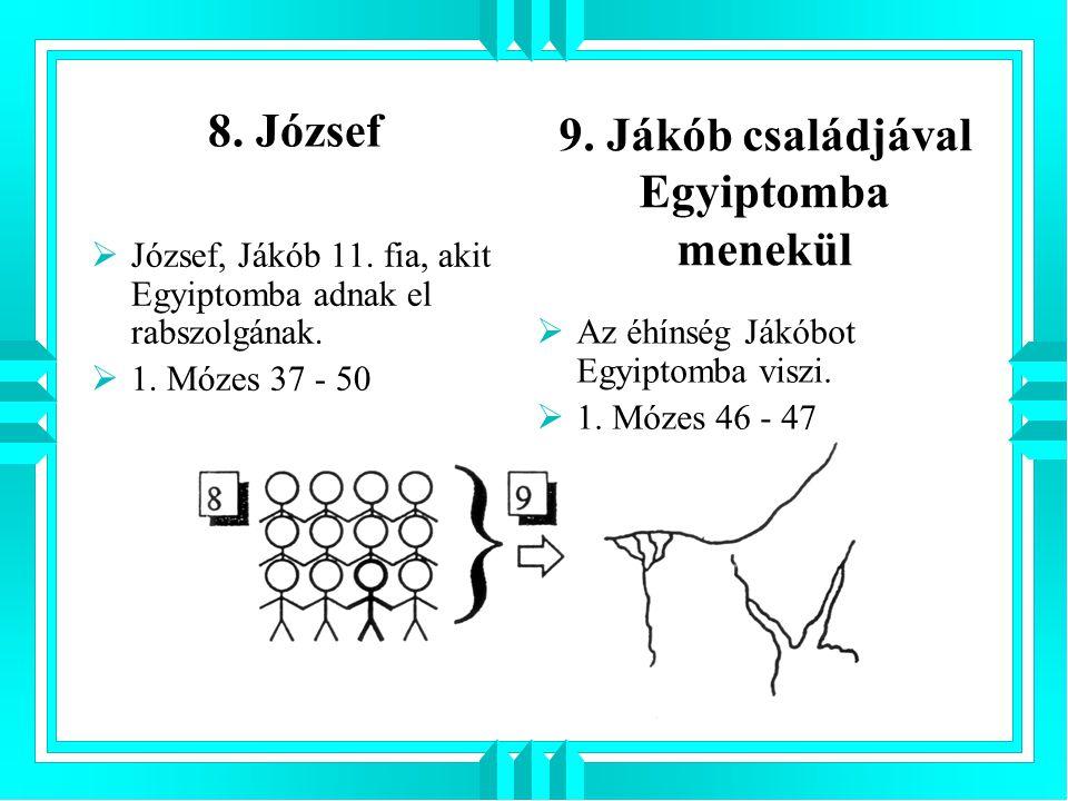 8. József  József, Jákób 11. fia, akit Egyiptomba adnak el rabszolgának.  1. Mózes 37 - 50  Az éhínség Jákóbot Egyiptomba viszi.  1. Mózes 46 - 47