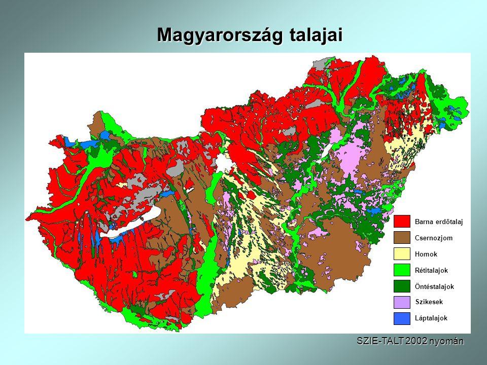 Magyarország talajai SZIE-TALT 2002 nyomán Barna erdőtalaj Csernozjom Homok Rétitalajok Öntéstalajok Szikesek Láptalajok